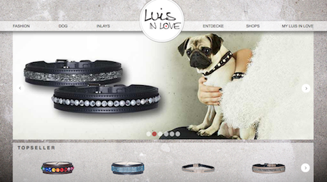 luis in love hundehalsband