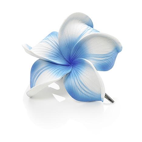 Dolly Martin Frangipani Haarclip neon blau NE.S-00.00.32